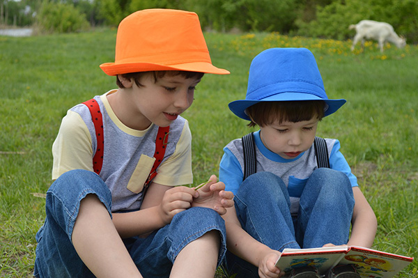 Boys are reading a book