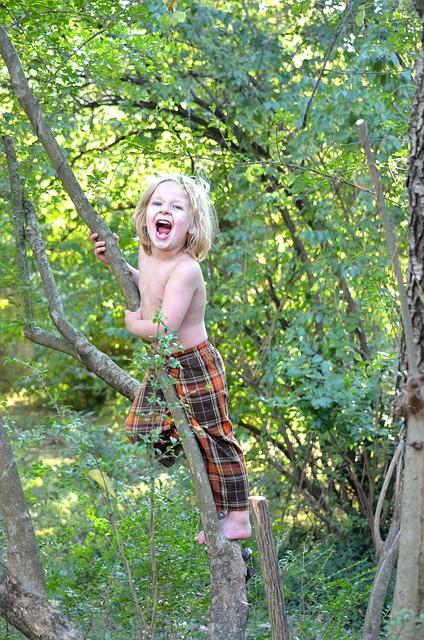 Climbing, nature play activities- Pixabay