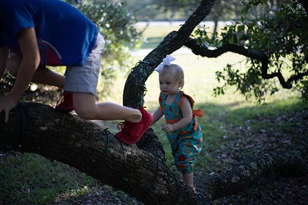 Kids climb trees, photo credit Jeremiah Lawrence, unsplash